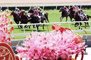 香港新春賽馬慶賀新年